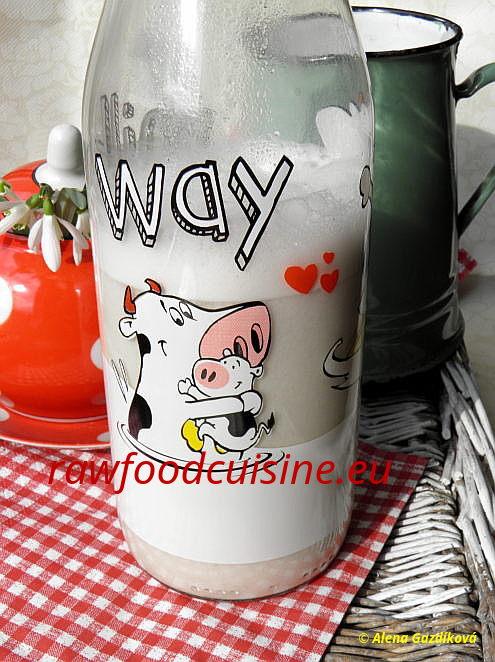Raw vegan mlieka asmotany