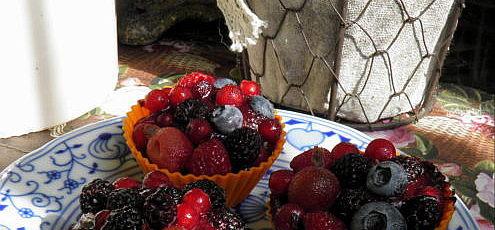 Raw ovocné tortičky