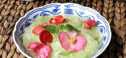 Raw vegan uhorkový šalát sbegóniou