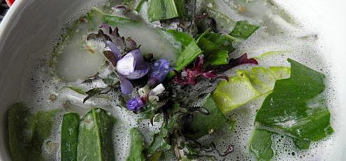 Raw vegan jarné bylinkové tzaziky