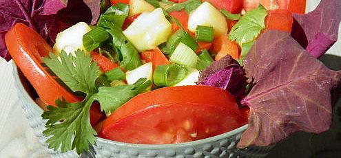Raw vegan paradajkový šalát smangom