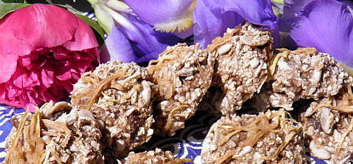 Raw vegan zázvorové koláčiky smangom
