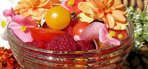 Raw vegan paradajkovo-malinový šalát sjedlými kvetmi