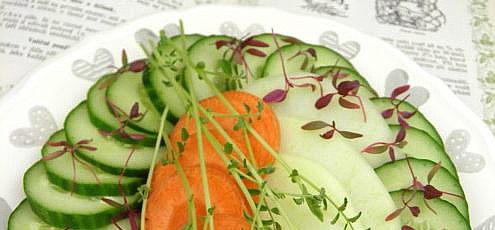 Zeleninový šalát s mladým cícerom
